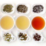 tea-in-esrd